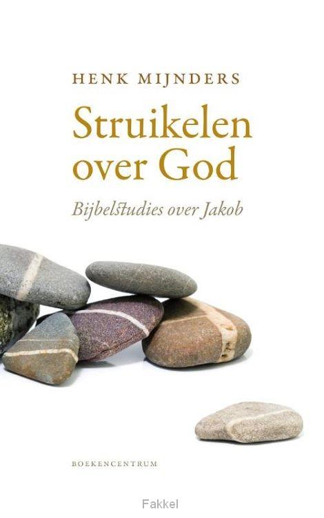 product afbeelding voor: Struikelen over God