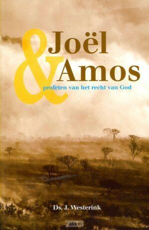 product afbeelding voor: Joel en Amos