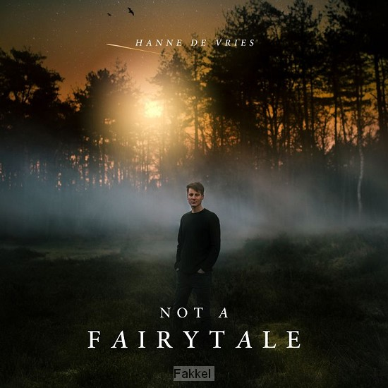 product afbeelding voor: Not a fairytale