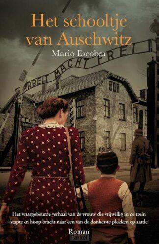 product afbeelding voor: Schooltje van Auschwitz